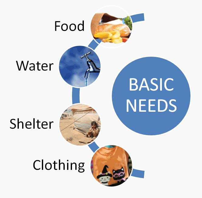 Make enough money to meet basic needs — food, shelter, and clothing