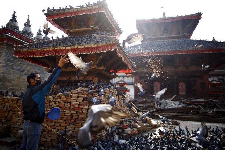 A man feeds pigeons near the debris of a collapsed temple after the earthquake in Kathmandu, Nepal, May 14, 2015. REUTERS/Navesh Chitrakar